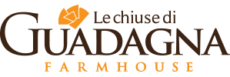 cropped-cropped-logo-chiusediguadagna-light2-1.png